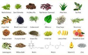 eotic ingredients