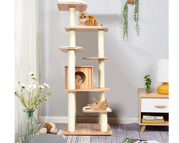 best cat trees for large cats post images